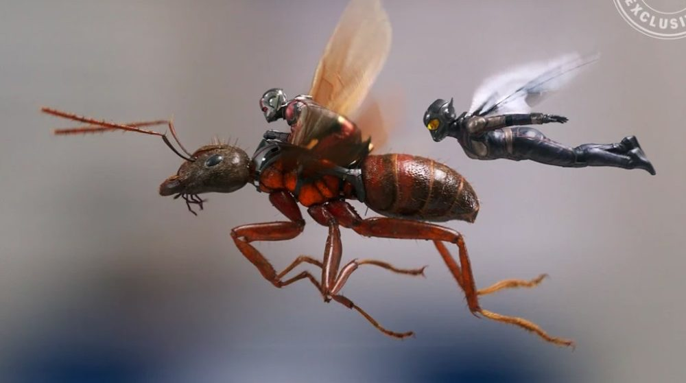 Ant-Man and the Wasp billeder / Filmz.dk