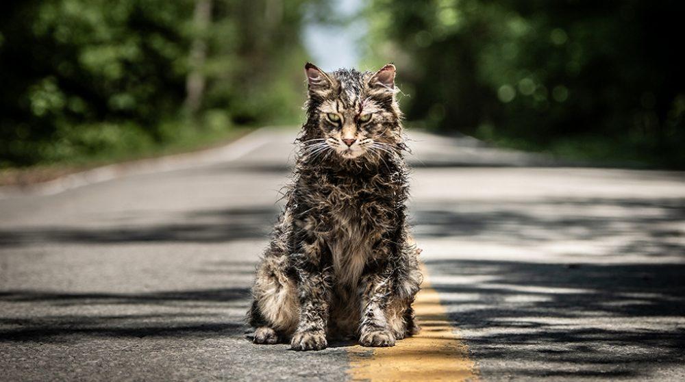 Pet Sematary trailer 2019 / Filmz.dk