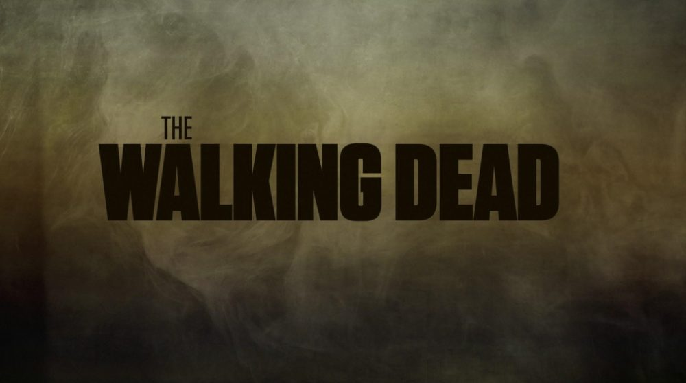 The Walking Dead Sæson 10 / Filmz.dk