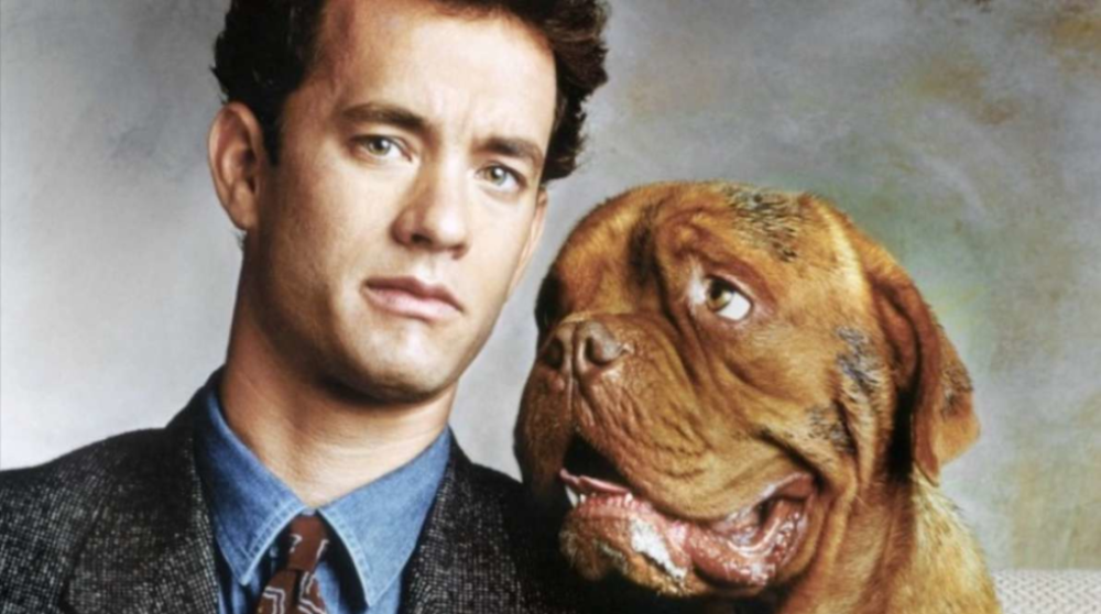 Turner hund hooch Disney Plus reboot serie / Filmz.dk