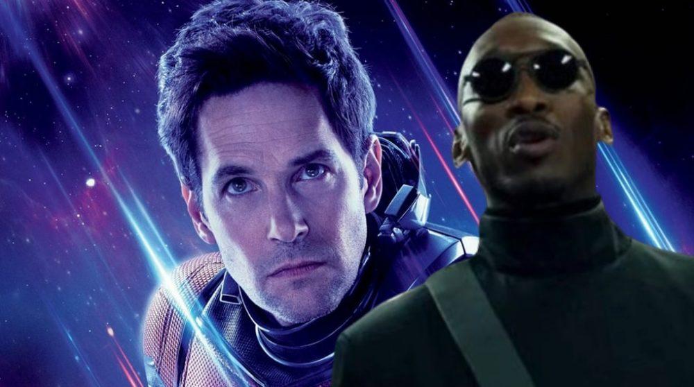 MCU 2022 titel Ant-Man 3 Blade / Filmz.dk
